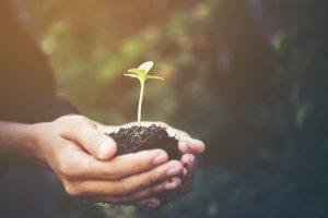 Eco-Friendly-Millennial-Generation