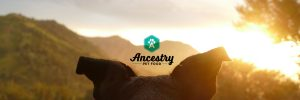 Ancestry Pet Food Packaging Project