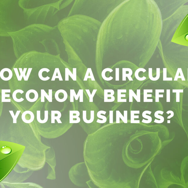 How Can A Circular Economy Benefit Your Business?